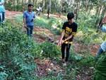 Thiếu nữ 16 tuổi bị sát hại ở rừng cao su: Dang dở ước mơ học nghề trang điểm cùng chị gái-4