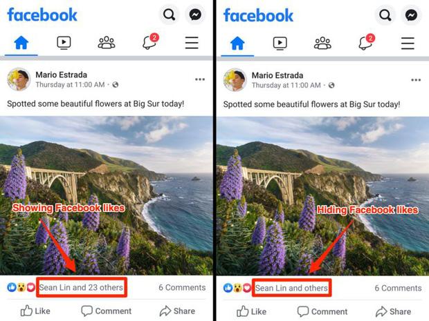 Hình ảnh đầu tiên về Facebook bỏ hiển thị số Like: Không còn khoe mẽ, chỉ hiện vài cái tên trơ trọi-1