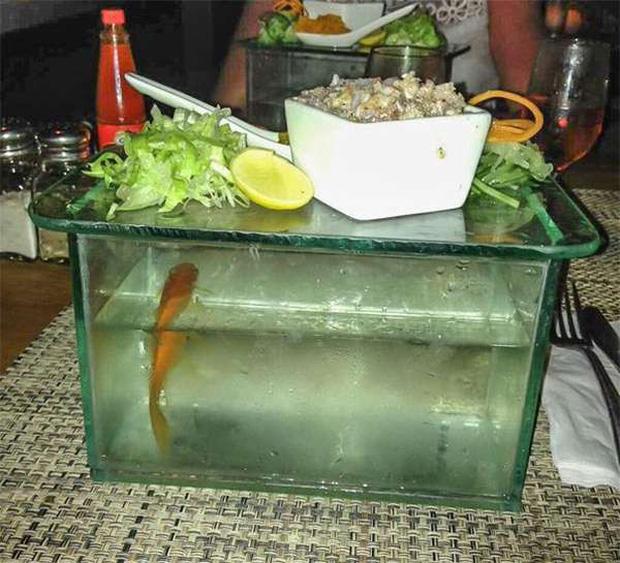 """Những pha trình bày món ăn như… muốn đuổi khách đi của các nhà hàng dị"""" nhất thế giới, cẩn thận xem xong nghẹn""""!-8"""