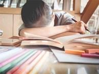 Khi con nói 'Mẹ ơi, con không muốn học', đây sẽ là câu trả lời của cha mẹ có thể thay đổi cuộc đời con