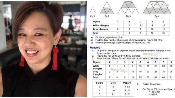 2 bài toán tiểu học quá khó, mẹ Singapore viết thư cầu cứu Bộ trưởng-1