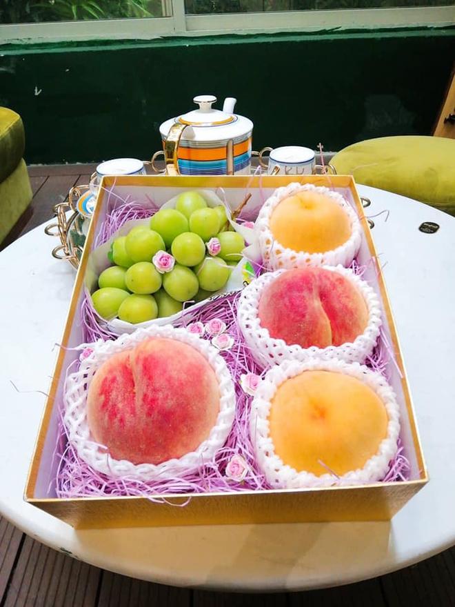 Đào tiên Nhật Bản có giá gần 1 triệu/cặp hút giới nhà giàu Việt-4