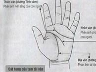 5 điểm cực hiếm trên bàn tay là thần Tài hộ mệnh, báo hiệu người khổ trước sướng sau, vãn niên giàu có