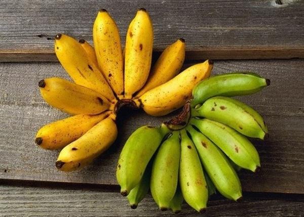 Cụ bà 107 tuổi, chỉ phải đi viện 2 lần trong đời tiết lộ bí quyết sống khỏe nhờ ăn loại quả này mỗi ngày-9