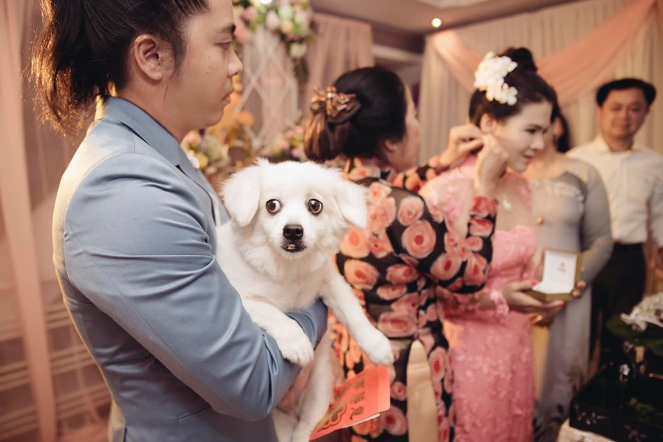 Bức ảnh hài hước nhất ngày: Giữa lễ cưới chú rể phải bồng bế thú cưng để mẹ đẻ đeo trang sức cho vợ-2