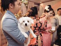 Bức ảnh hài hước nhất ngày: Giữa lễ cưới chú rể phải bồng bế thú cưng để mẹ đẻ đeo trang sức cho vợ