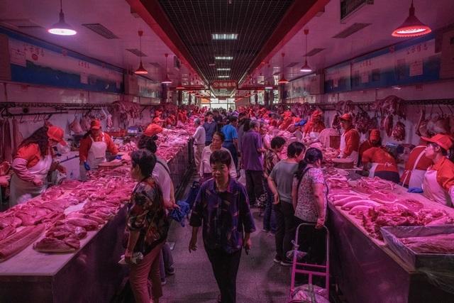 Bí mật bên trong kho dự trữ thịt lợn chiến lược của Trung Quốc-2