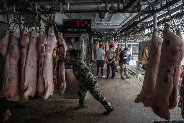 Bí mật bên trong kho dự trữ thịt lợn chiến lược của Trung Quốc-3