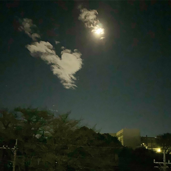 Trái ngược với bầu trời tím dự báo điềm dữ trước khi Hagibis đổ bộ, dân Nhật hứng khởi với cảnh quang đãng, trăng sáng rực lúc siêu bão đi qua-13
