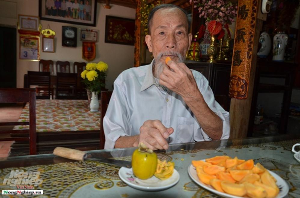 Chuyện thú vị quanh những cây hồng tiến vua sắp tuyệt chủng ở Phú Thọ-1