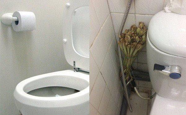 Bỏ 5 nghìn mua sả đặt đúng chỗ này, cả tuần không dọn nhà vệ sinh vẫn thơm ngát-1