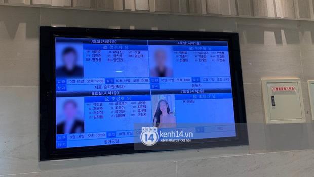 Tang lễ Sulli từ Hàn: Fan khiếm thị một mình đến sớm chờ, Yoo Ah In tiết lộ nghệ sĩ Hàn đã đến viếng từ rạng sáng-19