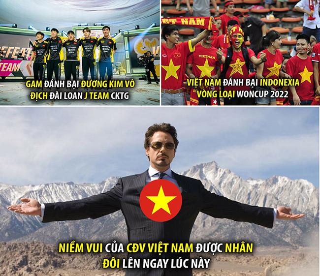 Cộng đồng mạng hả hê chế ảnh Việt Nam hạ đẹp Indonesia-6