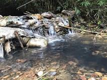 Vụ nước sạch Sông Đà nhiễm dầu: Bắt khẩn cấp hai đối tượng đổ trộm dầu thải