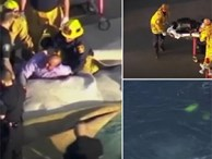 Ông bố lao xe xuống biển dìm chết 2 con bị tự kỷ nhằm chiếm đoạt 6 tỷ đồng tiền bảo hiểm nhân thọ