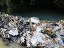 Phát ngôn phản cảm, nước sạch sông Đà muốn phủi trách nhiệm
