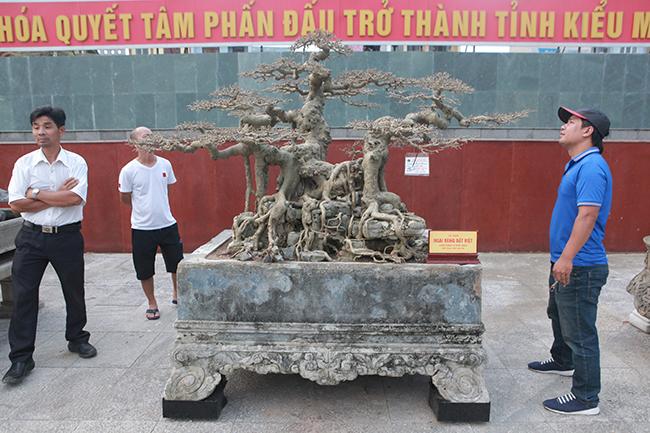 """Sanh Ngai vàng đất Việt"""" mua 10 triệu, sau 15 năm trả vài tỷ không bán-1"""