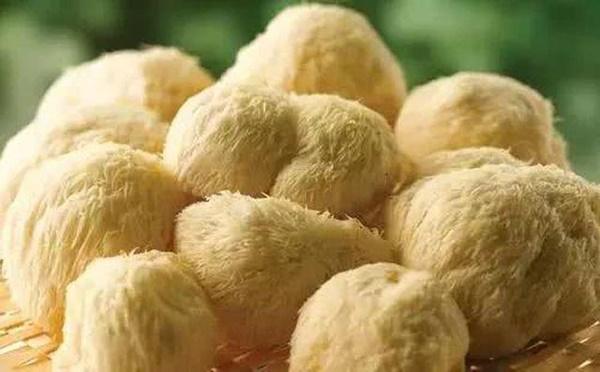 5 loại nấm tốt nhất cho sức khỏe ngừa chất gây ung thư loại 1, giúp trẻ thông minh hơn-3
