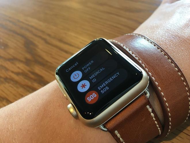 Apple Watch tự gọi 911, cứu mạng người leo núi-1