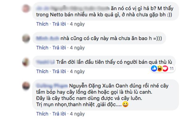 Quả mọc dại ở Việt Nam được bày bán sang chảnh ở siêu thị nước ngoài-6