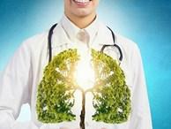 9 cách tự nhiên và đơn giản giúp làm sạch phổi