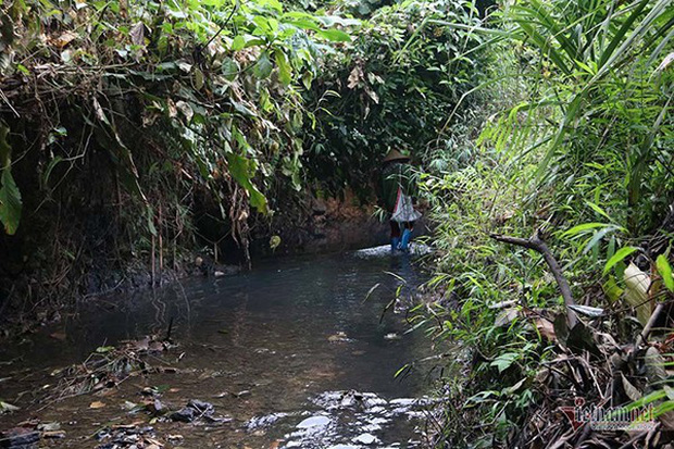 Nước nhiễm dầu thải, Viwasupco xin lỗi, miễn phí 1 tháng tiền nước-1