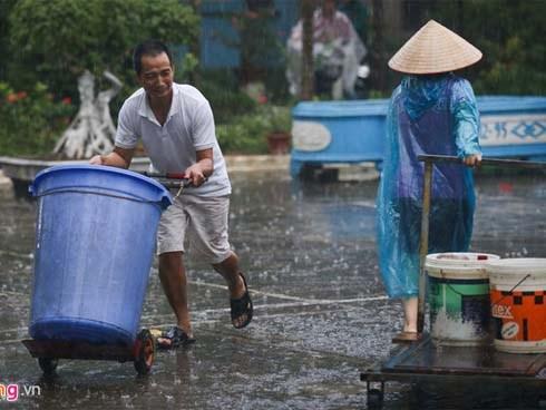 Vụ nước sông Đà nhiễm dầu: 'Phải xử lý đến nơi đến chốn để răn đe'