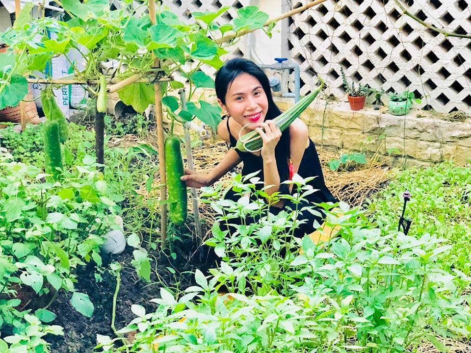 Khu vườn đủ thứ rau quả sạch trong biệt thự của Công Vinh - Thủy Tiên-3