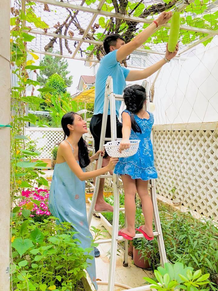 Khu vườn đủ thứ rau quả sạch trong biệt thự của Công Vinh - Thủy Tiên-6