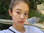 Đâu chỉ skincare, phụ nữ Hàn còn chăm ăn uống 4 loại thực phẩm sau để da đẹp như mơ và trẻ cực lâu-5