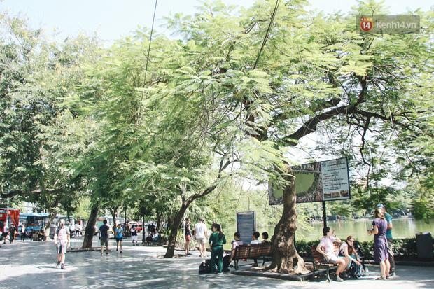 Người Hà Nội nói gì trước đề xuất cấm phương tiện lưu thông quanh Hồ Hoàn Kiếm trong 1 tháng?-11