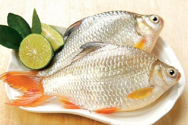 Bí quyết chọn cá ngon con nào cũng tươi nguyên khiến món ăn đậm đà, chuẩn vị-2