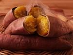 """Nếu ở thời điểm vàng"""" này trong ngày bạn ăn 1 củ khoai lang sẽ vừa chống được ung thư vú lại còn giảm cân và sống thọ hơn-5"""