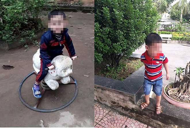 Vụ bé trai 4 tuổi mất tích khi đang chơi cùng bà nội: Tìm thấy thi thể nạn nhân-1