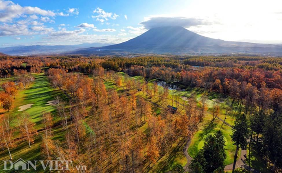 Hình ảnh mùa thu vàng tuyệt đẹp trên hòn đảo Hokkaido-1