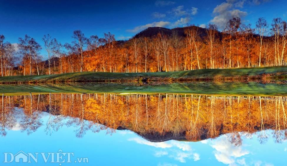 Hình ảnh mùa thu vàng tuyệt đẹp trên hòn đảo Hokkaido-10