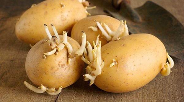 Sự thật về 3 thực phẩm cấm kị ăn với khoai tây, đây mới là thứ không nên ăn nhất-4