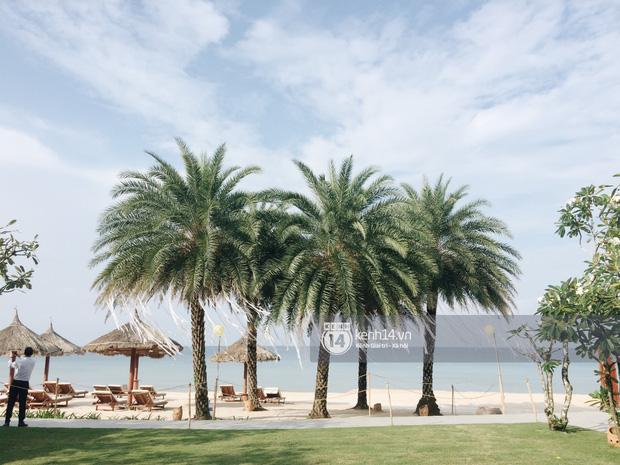 Không gian lễ cưới Đông Nhi - Ông Cao Thắng đã hoàn thiện, đẹp lung linh như cổ tích giữa biển đảo Phú Quốc-4