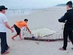 Vụ thi thể phụ nữ không đầu ở bãi biển: Hé lộ nguyên nhân-3