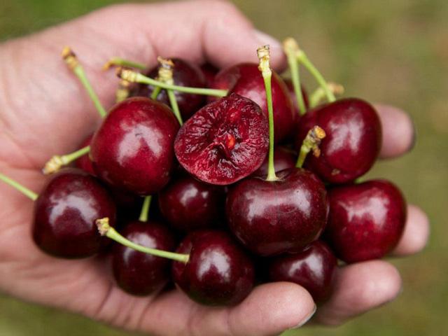 """Chỉ cần ăn 5 loại thực phẩm này đều đặn mỗi sáng, ung thư ruột kết nguy hiểm cũng lánh xa"""" bạn-3"""