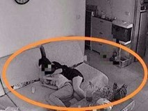 Âm thầm lắp camera ở nhà để tiện theo dõi con trai 11 tuổi, ông bố bất ngờ khi phát hiện cảnh tượng này