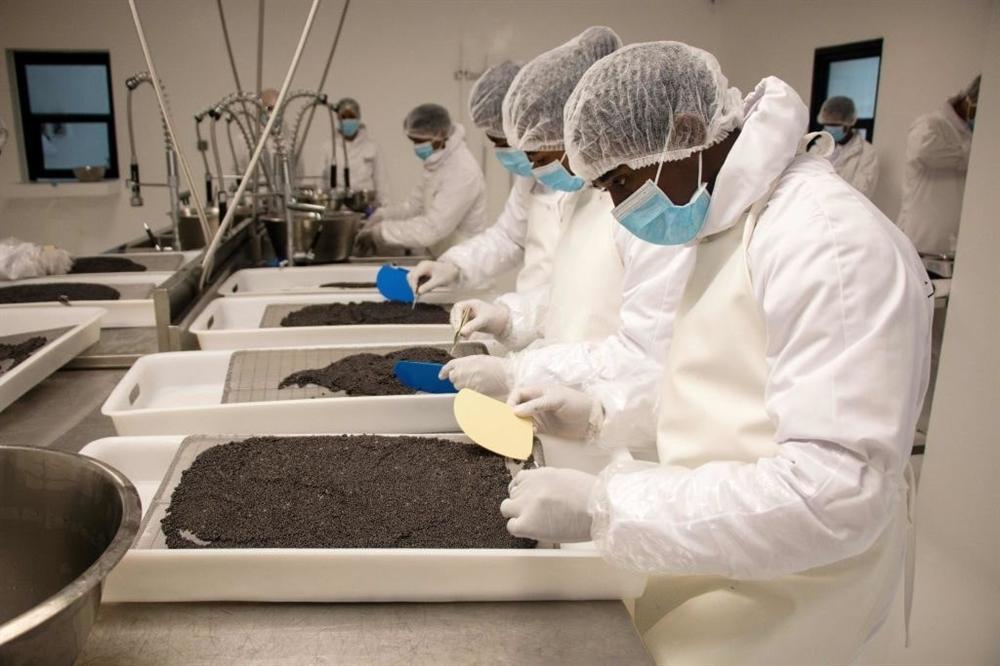 Món vàng đen 2.3 tỷ/kg cho giới siêu giàu-3