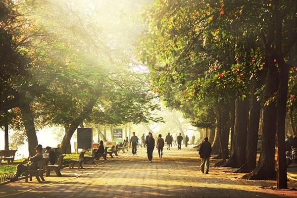 Dự báo thời tiết 20/11: Hà Nội đêm rét, ngày hửng nắng-1