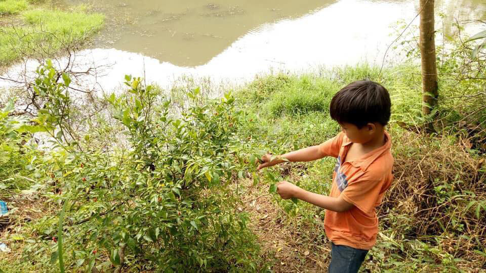 Cậu bé 10 tuổi sống cô độc, đi hàng trăm cây số đưa thi thể bố về chôn cất-9
