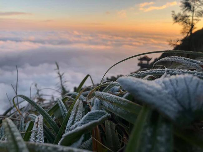 Băng tuyết đầu mùa phủ trắng đỉnh Fansipan, dự báo một mùa tuyết rơi đẹp đến ngỡ ngàng-4
