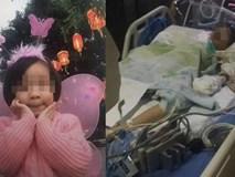 Đang nhún nhảy trên bạt lò xo, bé gái 8 tuổi bỗng ngất xỉu, nhiều khả năng bị liệt vĩnh viễn trước sự bình thản của nhân viên khu vui chơi