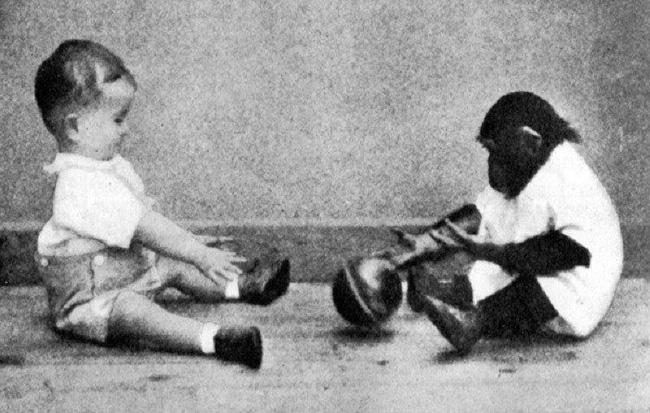 Cho con trai và tinh tinh ăn ngủ cùng nhau để phục vụ thí nghiệm, nhà khoa học vội chấm dứt mọi thứ sau 9 tháng khi phát hiện ra sự thật kinh hoàng-4