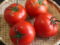 Đừng để 8 thực phẩm này vào tủ lạnh vì có thể khiến nó biến chất và sinh độc