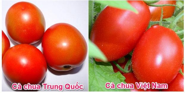 4 dấu hiệu phát hiện cà chua tẩm hóa chất, chị em chớ dại mà mua-1