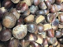 Hạt dẻ Tàu 50 ngàn/kg gắn mác Trùng Khánh, Sapa thổi giá cao gấp 3